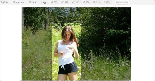 Скрин выделения части изображения