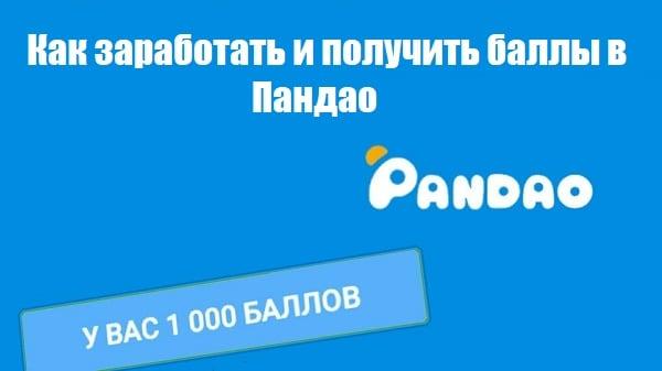Изучаем, как зарабатывать баллы в Пандао