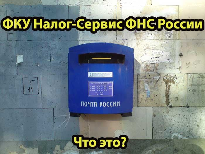 ФКУ Налог-Сервис ФНС России - что это?