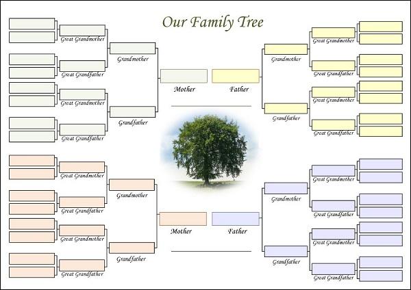 Боковые деревья