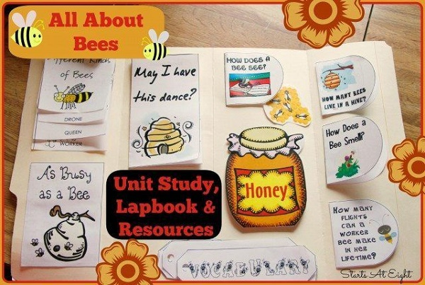 lapbook-bee