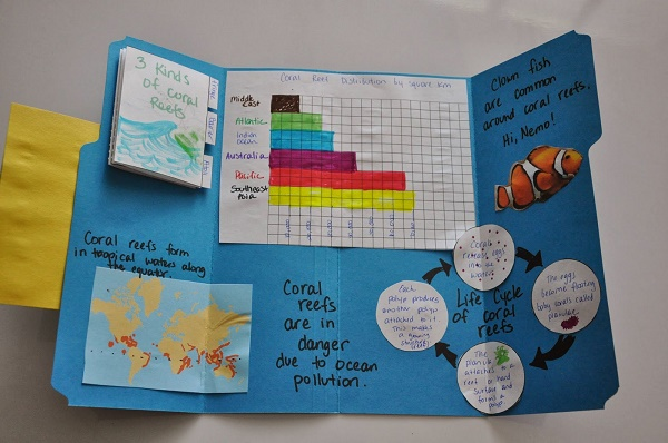 lapbook-example