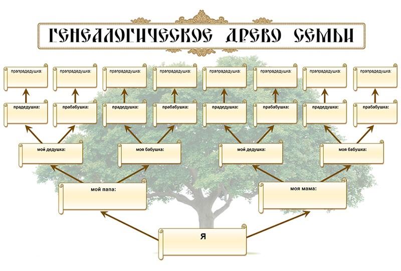 Семейное древо1