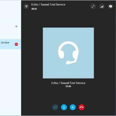 Skype Echo