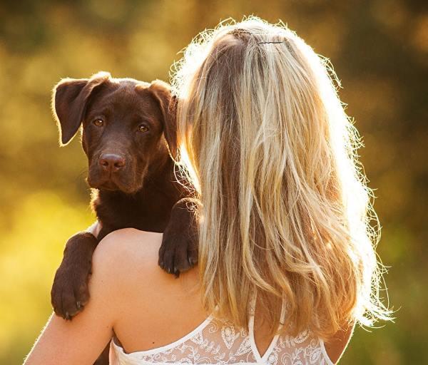 Фото девушки со спины с собакой