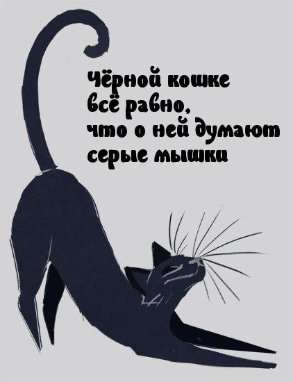 чёрная кошка аватар