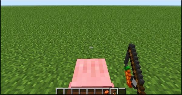 Удочка с морковкой свинья