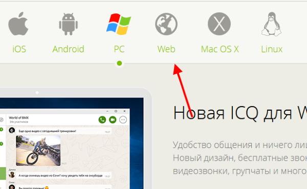 Раздел Web