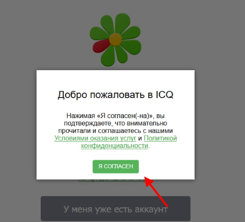 Страница входа в веб-ICQ