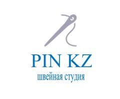 Логотип PIN KZ