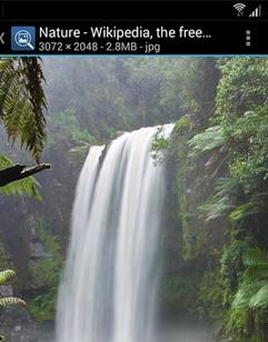 Pic Finder поиск картинок