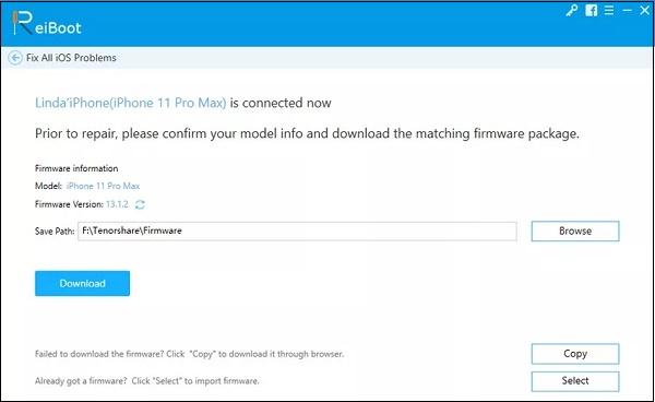 Reiboot-Download