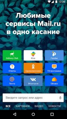 """Приложение """"Портал Mail.ru"""""""