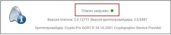 "Статус ""Плагин загружен"""