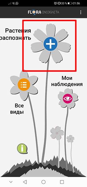 Кнопка распознать растение