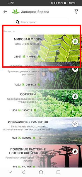 Проект мировая флора