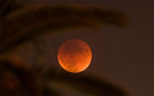 Снимок луны, сделанный ночью