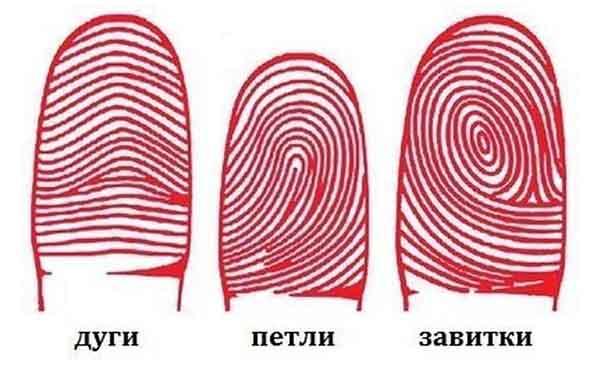 Типы отпечатков пальца