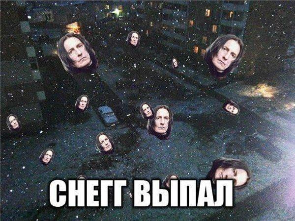 Мем про Свереуса Снегга