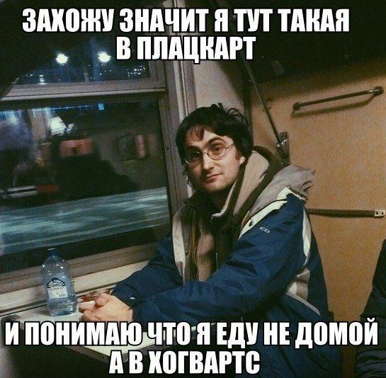 Двойник Гарри Поттера