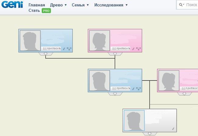 Схема формирования генеалогического древа на ресусре Geni