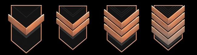 4 бронзовых ранга