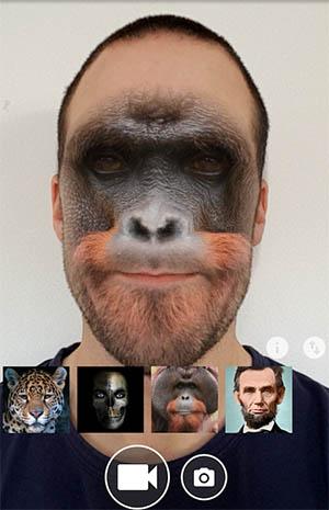 Лицо животного