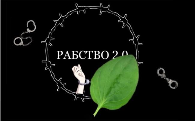 Изображение с терновым венком, листом и наручниками