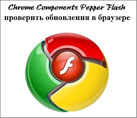 "Учимся обновлять компонент ""Pepper Flash"""