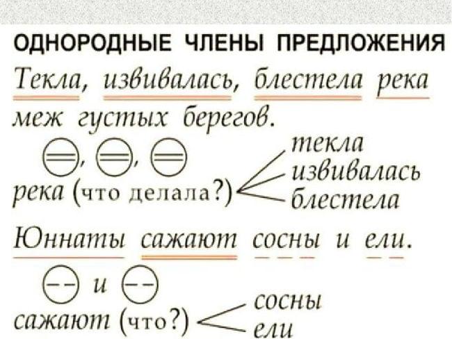 Кружки, обозначающие однородные члены предложения и их роли