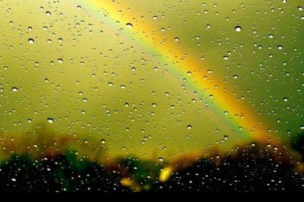Указанные сервисы помогут вам предсказать возможность дождя на тот или иной день ближайшей недели