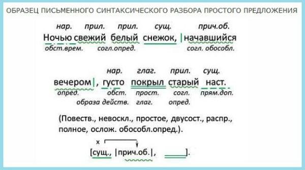 Образец письменного синтаксического разбора простого предложения
