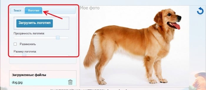 сделать логотип водяным знаком онлайн